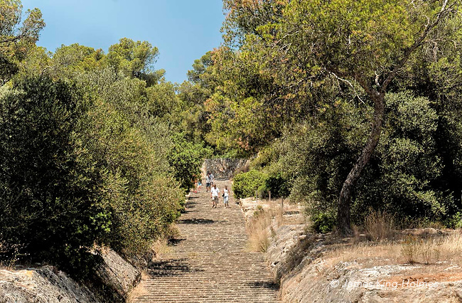 A footpath leading from the tourist attraction of Bellver Castle in Palma de Mallorca down the hillside and through woodland into the city.