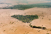 Mato Grosso State. Aerial view of agriculture with small heart shaped forest reserve areas between Xingu.
