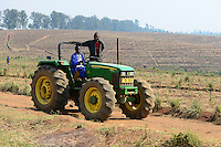 Malawi, Thyolo, Makandi Tea Estate, a fair trade tea plantation, John Deere Tractor