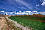 Palouse Hills Farm Road
