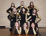 December 15, 2014- Tuscola, IL- The 2014-2015 Warriorettes. Back row from left are Calleigh Miller, Cassie Westjohn, and Maddy Goodmann. Middle row from left are Ryce Ward, Shelby North, and Andrea Murphy. Front row from left are Glenda Wold, Sarah Lemke, and Wendy Guo. [Photo: Douglas Cottle]