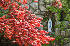 May 6, 2016; Grotto during spring. (Photo by Barbara Johnston/University of Notre Dame)