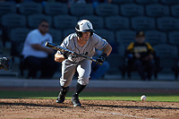 Kyle Westfall (2) of the Coastal Carolina Chanticleers lays down a bunt against the Duke Blue Devils at Segra Stadium on November 2, 2019 in Fayetteville, North Carolina. (Brian Westerholt/Four Seam Images)