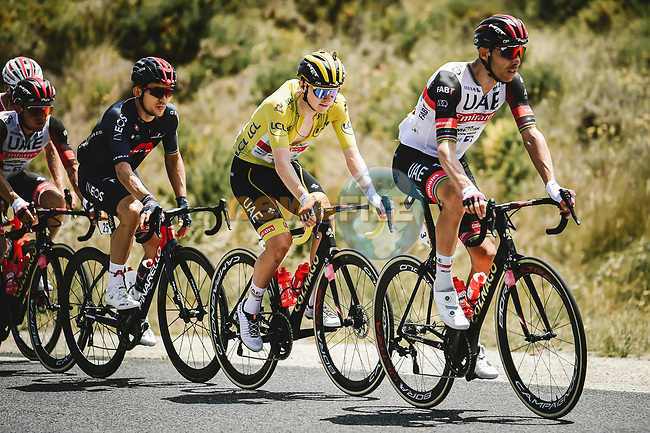 Rui Costa (POR) leads team mate Yellow Jersey Tadej Pogacar (SLO) UAE Team Emirates during Stage 15 of the 2021 Tour de France, running 191.3km from Ceret to Andorre-La-Vieille, France. 11th July 2021.  <br /> Picture: A.S.O./Pauline Ballet | Cyclefile<br /> <br /> All photos usage must carry mandatory copyright credit (© Cyclefile | A.S.O./Pauline Ballet)