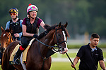 JUNE 06: War of Will prepares for The Belmont Stakes at Belmont Park in Elmont, New York on June 06, 2019. Evers/Eclipse Sportswire/CSM