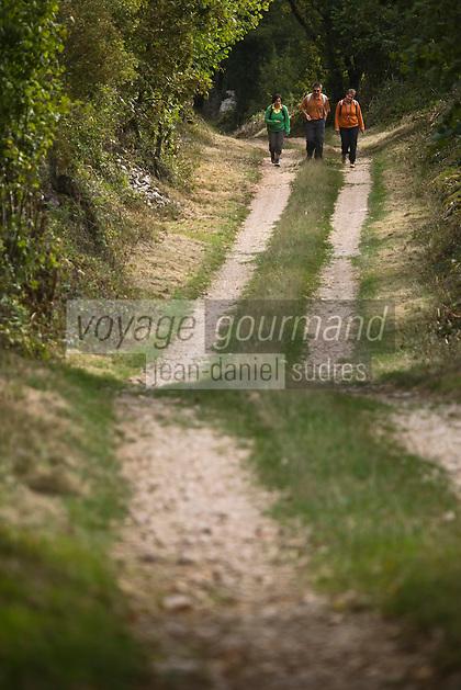 Europe/France/Midi-Pyrénées/46/Lot/Env Fontanes-du-Causse: Sur le circuit de la Forêt de la Braunhie au Font de Lavadoux  Auto N°: 2008-221  Auto N°: 2008-222