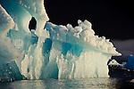Floating Icebergs, Stikine-LeConte Wilderness, Tongass National Forest, Southeastern, Alaska, USA
