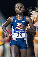 Elvin Kibet of Arizona approaches the finish line in 10000 meter semifinal during West Preliminary Track & Field Championships at John McDonnell Field, Thursday, May 29, 2014 in Fayetteville, Ark. (Mo Khursheed/TFV Media via AP Images)