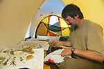 Bruce Bennett Organizing Plants