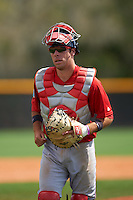 Boston Red Sox Austin Rei (28) during a minor league Spring Training game against the Tampa Bay Rays on March 23, 2016 at Charlotte Sports Park in Port Charlotte, Florida.  (Mike Janes/Four Seam Images)
