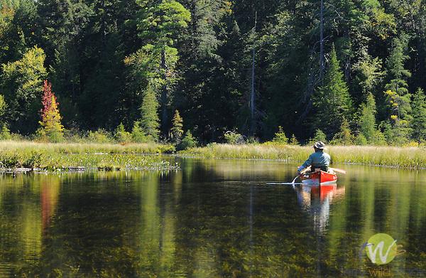 Canoeing Osgood Lake, Adirondack National Park, NY.