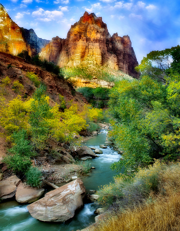 Virgin River with fall color. Zion National Park, Utah