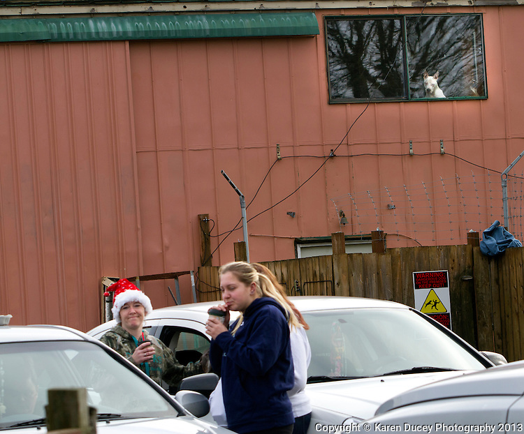"""Supporters of the Olympic Animal Sanctuary in Forks, WA share hot drinks in the driveway on December 15, 2013.  One of the supporters who later asked not to be identified said she's out here because """"I believe in his golden heart and good intentions with these dogs. I believe he has an unbelievable gift and he's pursuing that.  And I support him.""""<br /> <br /> Owner Steve Markwell Markwell has been under fire for neglecting the dogs after volunteers filed a complaint in 2012. The City of Forks police department investigated and found horrific conditions but said legally they were unable to do anything about it. Markwell claims he has 125 dogs inside and believes he is their last hope.  Many of the dogs were turned over to him by rescues and shelters who deemed them dangerous. Mounting evidence of animal cruelty has prompted many of them to ask for their dogs back.  Markwell refuses and only lets a few trusted volunteers enter the premises. <br /> <br /> As a volunteer in a vet's office she said she's met Steve regularly when he visits a couple days a week. The dogs do not accompany him. She is here today because she felt the protesters were getting out of hand over the weekend and reported they ripped supporting signs down from a coffee shop.  """"They tore them up and stomped on them in a mud puddle.""""<br /> <br /> The anonymous woman who supports Steve Markwell said she feels like she was attacked on a social media page for making a comment and had received a threatening voice mail this morning that came from an unknown caller. """"I heard that you stand with OAS.  Well, I know your address.""""<br /> <br /> No one from the fours cars humming in the driveway were seen entering the building though owner Steve Markwell spent about an hour inside in the morning. """"I see this man crumbling."""" she said. """"This is so much pressure to put him under for a job that nobody else is willing to do."""""""
