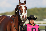 September 19, 2015. I'm a Chatterbox arrives at the paddock before the $1,000,000 Grade I Cotillion Stakes, one and 1/16th miles for three-year-old fillies, at  Parx Racing in Bensalem, PA. Trainer is Larry Jones; owners are Fletcher and Carolyn Gray (Joan Fairman Kanes/ESW/CSM)