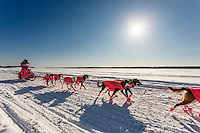 DeeDee Jonrowe on the Koyukuk River after leaving  the Koyukuk checkpoint on the afternoon of Sunday  March 15, 2015 during Iditarod 2015.  <br /> <br /> (C) Jeff Schultz/SchultzPhoto.com - ALL RIGHTS RESERVED<br />  DUPLICATION  PROHIBITED  WITHOUT  PERMISSION