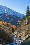 Austria, East-Tyrol, High Tauern Nationalpark, Kals am Grossglockner: brook Kalsbach | Oesterreich, Osttirol, bei Kals am Grossglockner: der Kalsbach