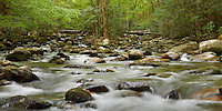 Spring runoff in the Middle Prong of the Little Pigeon River in the Great Smoky Mountains National Park.