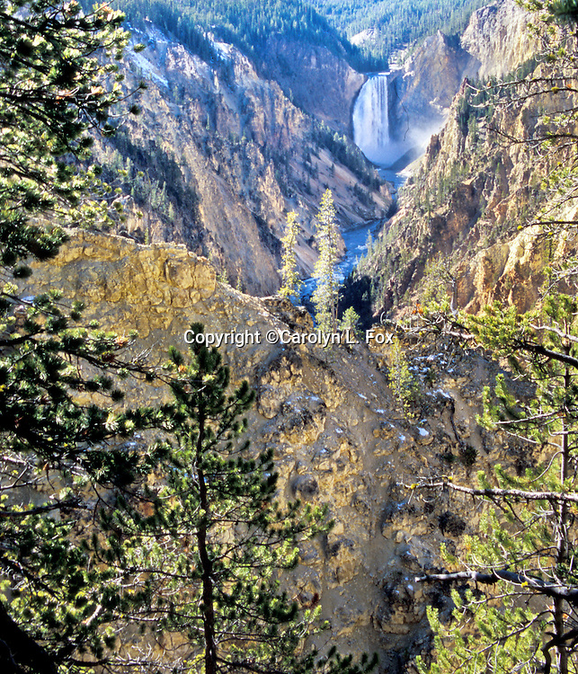 The Grand Canyon of the Yellowstone is a popular tourist spot.