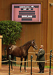 12 September 2010.  Hip #94 Unbridled's Song - Soul Search filly, sold for $685,000 at the Keeneland September Yearling Sale.  Consigned by Lane's End.