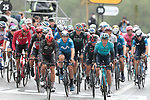 The peloton including Thomas De Gendt (BEL) Lotto Soudal, Jakob Fuglsang (DEN) Astana-Premier Tech and Ivan Garcia Cortina (ESP) Movistar Team crosses the finish line at the end of Stage 16 of the 2021 Tour de France, running 169km from Pas de la Case to Saint-Gaudens, Andorra. 13th July 2021.  <br /> Picture: Colin Flockton   Cyclefile<br /> <br /> All photos usage must carry mandatory copyright credit (© Cyclefile   Colin Flockton)