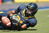 Keenan Allen barely misses the catch. The University of California Berkeley Golden Bears defeated the UC Davis Aggies 52-3 in their home opener at Memorial Stadium in Berkeley, California on September 4th, 2010.