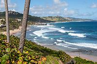 Barbados.  Eastern Shore, Atlantic Ocean View from Bathsheba.