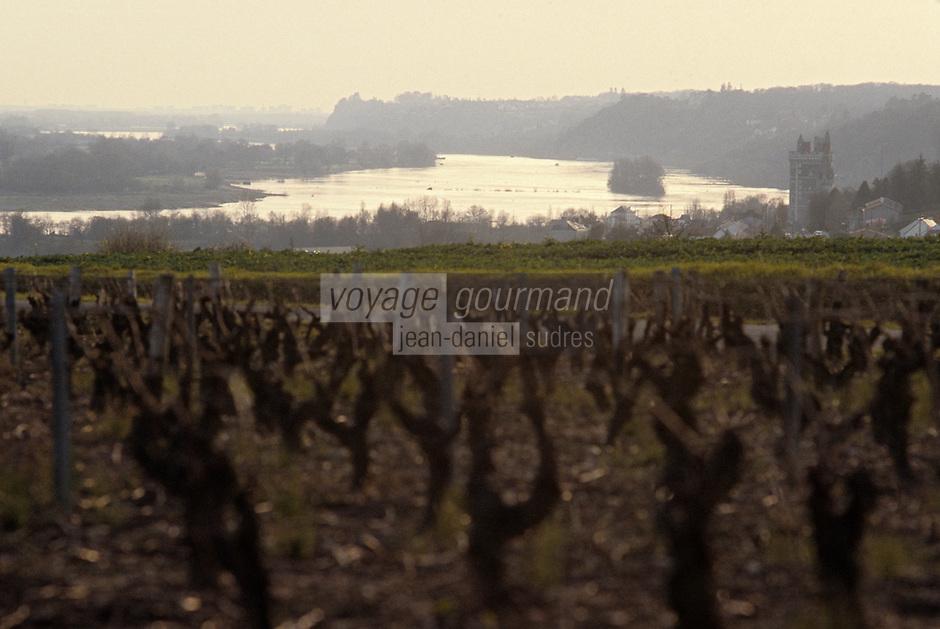 Europe/France/Pays de la Loire/44/Loire-Atlantique/L'Oudon: Muscadet des coteaux de la Loire