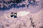 Polar bears, Churchill, Manitoba, Canada<br /> Canon EOS-3<br /> Canon EF 70-200mm lens<br /> March 2000
