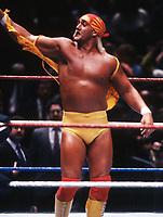 Hulk Hogan 1989                                                                 Photo By John Barrett/PHOTOlink
