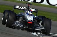 Mika Hakkinen (#3 McLaren)