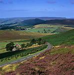 Grossbritannien, England, Derbyshire, Peak District National Park, Landstrasse, Heidekraut (Erika) | Great Britain, England, Derbyshire, Peak District National Park, road running through Heather covered scenery