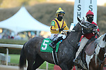 March 6, 2021: Pauline's Pearl (5) with jockey Francisco Arrieta aboard during the Honeybee Stakes (G3) at Oaklawn Racing Casino Resort in Hot Springs, Arkansas on March 6, 2021. Justin Manning/Eclipse Sportswire/CSM