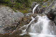 Cascades on Willey Brook in Crawford Notch of the New Hampshire White Mountains. This brook supplied water to the Mount Willard Section House. And these cascades are located high above the Maine Central Railroad's Willey Brook Trestle.