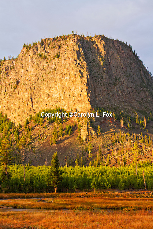 The morning sun illimuated the Yellowstone landscape.