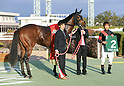 Horse Racing: Kyoto Racecourse