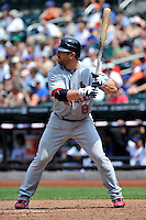 St. Louis Cardinals infielder Nick Punto #8 during a game against the New York Mets at Citi Field on July 21, 2011 in Queens, NY.  Cardinals defeated Mets 6-2.  Tomasso DeRosa/Four Seam Images