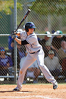 New York University Violets second baseman Jonathan Iaione (2) at bat during a game against the Edgewood Eagles on March 14, 2017 at Terry Park in Fort Myers, Florida.  NYU defeated Edgewood 12-7.  (Mike Janes/Four Seam Images)