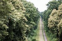 the infamous Trouée de Wallers - d'Arenberg > The Arenberg Forest lays quite peacefull in summer<br /> <br /> Nord-Pas de Calais region (FRA), 17 july 2020<br /> ©kramon
