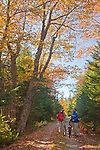 Two bicyclists stop along the park road on Isle au Haut to admire autumn's colors in Acadia National Park, Maine, USA