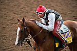 October 29, 2014: Exercise rider Willie Delgado gives California Chrome a pat on the neck after his morning workout at Santa Anita Race Course in Arcadia, California on October 29, 2014. Scott Serio/ESW/CSM