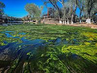 rio Sonora , Vado de Arizpe, Sonora .<br /> color verde, green color,