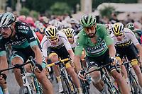 Green Jersey Peter Sagan (SVK/Bora-Hansgrohe)<br /> <br /> Stage 21: Houilles > Paris / Champs-Élysées (115km)<br /> <br /> 105th Tour de France 2018<br /> ©kramon