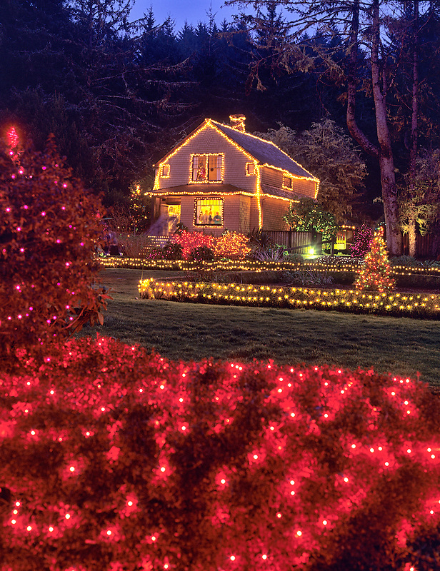 Shore Acres Gardens with Christmas lights. Oregon.