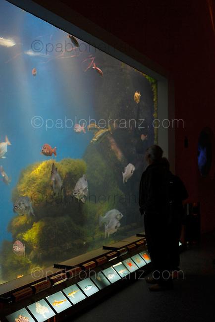 Casa del Agua (Aquarium Finisterrae) de La Coruña.