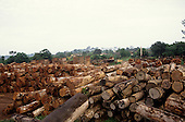 Amazon, Brazil. Sawmill yard with piles of tree trunks logged by clear-cuttin in virgin forest.