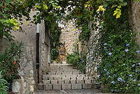 Rustic stone steps and plants in the medieval village of St Paul de Vance, Provence, France