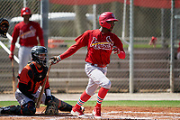 GCL Cardinals Diowill Burgos (49) at bat in front of catcher Jose Alvarez (6) during a Gulf Coast League game against the GCL Astros on August 11, 2019 at Roger Dean Stadium Complex in Jupiter, Florida.  GCL Cardinals defeated the GCL Astros 2-1.  (Mike Janes/Four Seam Images)