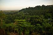Rio Grande, El Yunque National Forest, Puerto Rico<br /> September 9, 2021<br /> <br /> Sunrise on the El Yunque National Forest with<br /> Rio Grande in the back ground.