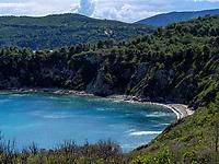 Golfo  Stella, Strand bei Capo al Pini, Elba, Region Toskana, Provinz Livorno, Italien, Europa<br /> Golfo  Stella, beach at Capo al Pini, Elba, Region Tuscany, Province Livorno, Italy, Europe