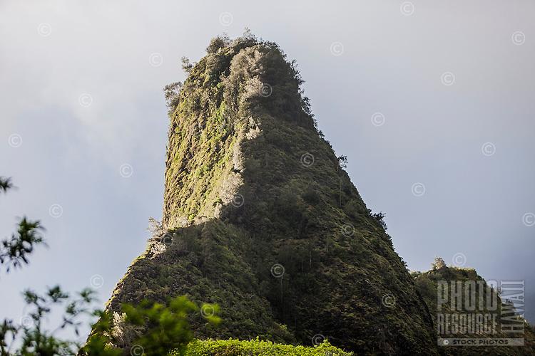 Close-up of Iao Needle, Iao Valley State Park, Wailuku, Maui